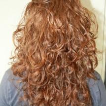 Curlsys 1 NA