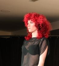 Haarkleuring show-2