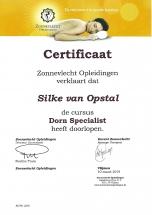 Diploma-Dorn-2019